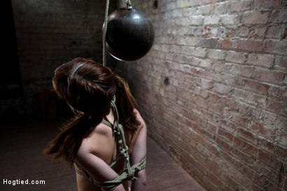 Photo number 6 from Sexy Emma Haize totally helpless as cock is jammed down her throat<br> Left on the floor to suffer shot for Hogtied on Kink.com. Featuring Emma Haize in hardcore BDSM & Fetish porn.