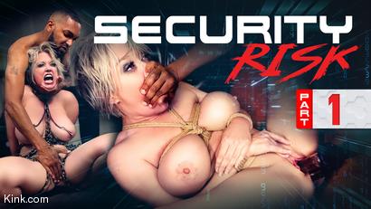 Security Risk, Part 1: Corruption
