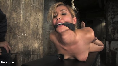 Photo number 5 from Isis Love Subs Vol.1 shot for Kink Compilations on Kink.com. Featuring Isis Love, Mark Davis, Evan Stone and Ben English in hardcore BDSM & Fetish porn.