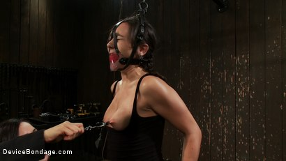 Photo number 11 from Will You Be My Little Piggy Today? shot for devicebondage on Kink.com. Featuring Isis Love and Sinn Sage in hardcore BDSM & Fetish porn.