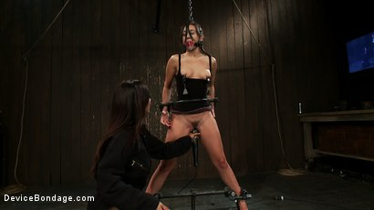 Photo number 12 from Will You Be My Little Piggy Today? shot for devicebondage on Kink.com. Featuring Isis Love and Sinn Sage in hardcore BDSM & Fetish porn.