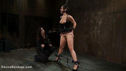 Photo number 15 from Will You Be My Little Piggy Today? shot for devicebondage on Kink.com. Featuring Isis Love and Sinn Sage in hardcore BDSM & Fetish porn.