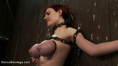 Photo number 10 from Gorgeous All Natural 19 Year Old Newbie Chained to the Wall shot for Device Bondage on Kink.com. Featuring Iona Grace in hardcore BDSM & Fetish porn.