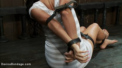Photo number 1 from Double zippers and a double Sybians<br> These girls are made to cum until they forget their names shot for Device Bondage on Kink.com. Featuring Miss Jade Indica, Isis Love and Amber Rayne in hardcore BDSM & Fetish porn.