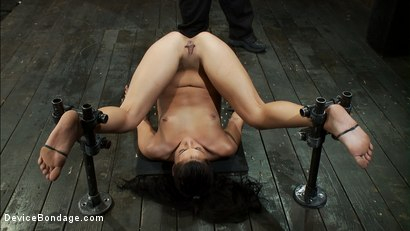 Photo number 9 from One girl is stretched to the limit of her body<br> The other takes the cane and takes it hard! shot for Device Bondage on Kink.com. Featuring Miss Jade Indica, Isis Love and Amber Rayne in hardcore BDSM & Fetish porn.