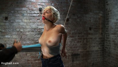 Photo number 4 from Cute Girl Next Door suffers her first Category 5 Suspension<br>Stripped and made to cum like a whore shot for Hogtied on Kink.com. Featuring Chloe Camilla in hardcore BDSM & Fetish porn.