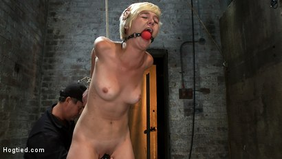 Photo number 9 from Cute Girl Next Door suffers her first Category 5 Suspension<br>Stripped and made to cum like a whore shot for Hogtied on Kink.com. Featuring Chloe Camilla in hardcore BDSM & Fetish porn.