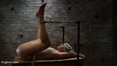 Photo number 4 from Hot blond's first time being made to squirt! <br>Totally helpless, bound, & cumming so much it hurts shot for Hogtied on Kink.com. Featuring Chloe Camilla in hardcore BDSM & Fetish porn.