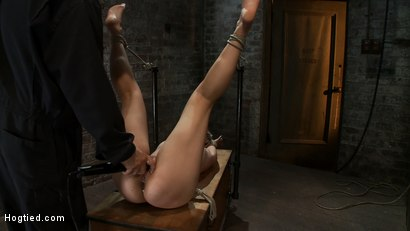 Photo number 7 from Hot blond's first time being made to squirt! <br>Totally helpless, bound, & cumming so much it hurts shot for Hogtied on Kink.com. Featuring Chloe Camilla in hardcore BDSM & Fetish porn.