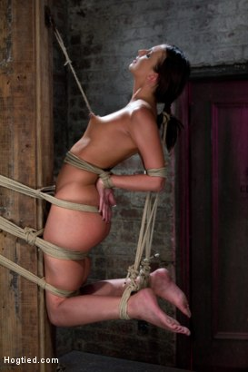 Photo number 11 from Predicament Category 5 bondage.   Pulled back by hair tie, pulled forward by nipples! shot for Hogtied on Kink.com. Featuring Katie Jordin in hardcore BDSM & Fetish porn.