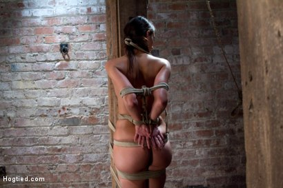 Photo number 3 from Predicament Category 5 bondage.  <br>Pulled back by hair tie, pulled forward by nipples!<br> shot for Hogtied on Kink.com. Featuring Katie Jordin in hardcore BDSM & Fetish porn.