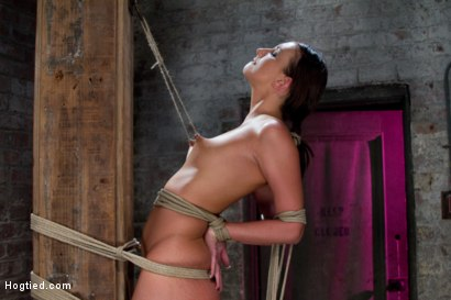 Photo number 10 from Predicament Category 5 bondage.   Pulled back by hair tie, pulled forward by nipples! shot for Hogtied on Kink.com. Featuring Katie Jordin in hardcore BDSM & Fetish porn.