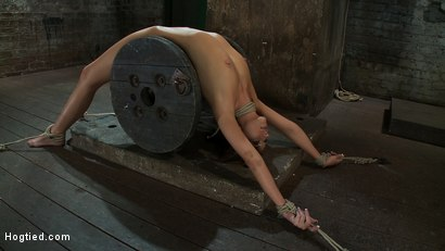 Photo number 1 from Nipple torture, brutal crotch rope and extreme bondage<br> Girl next door is abused and made to cum! shot for Hogtied on Kink.com. Featuring Katie Jordin in hardcore BDSM & Fetish porn.
