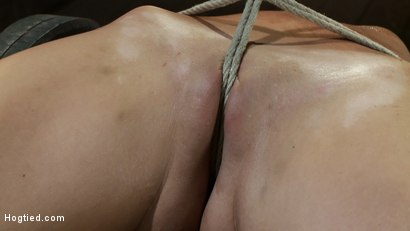 Photo number 13 from Nipple torture, brutal crotch rope and extreme bondage<br> Girl next door is abused and made to cum! shot for Hogtied on Kink.com. Featuring Katie Jordin in hardcore BDSM & Fetish porn.