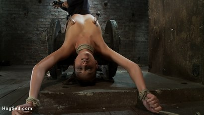 Photo number 6 from Nipple torture, brutal crotch rope and extreme bondage<br> Girl next door is abused and made to cum! shot for Hogtied on Kink.com. Featuring Katie Jordin in hardcore BDSM & Fetish porn.