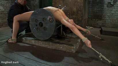 Photo number 8 from Nipple torture, brutal crotch rope and extreme bondage<br> Girl next door is abused and made to cum! shot for Hogtied on Kink.com. Featuring Katie Jordin in hardcore BDSM & Fetish porn.