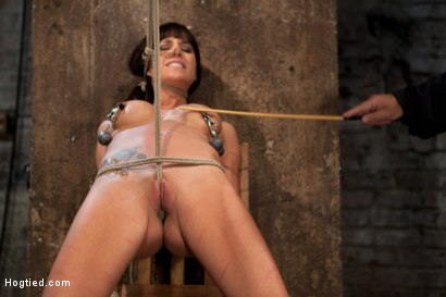 Photo number 10 from This is old school bondage and suffering at its best.<br>  The backbreaking crotch rope from HELL. shot for Hogtied on Kink.com. Featuring Isis Love and Gia DiMarco in hardcore BDSM & Fetish porn.