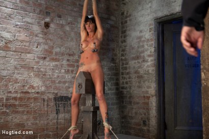 Photo number 7 from Extreme pussy torture on the wooden horse.<br>Hard flogging, a brutal zipper and now it's fun. shot for Hogtied on Kink.com. Featuring Isis Love and Gia DiMarco in hardcore BDSM & Fetish porn.