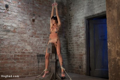 Extreme pussy torment on the wooden horse. Hard flogging, a brutal zipper and now it's fun.