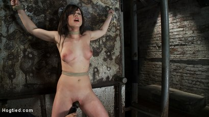 Photo number 11 from Beautiful girl next door is bound spread & helpless<br>Fingered, vibrated to orgasms after orgasms.  shot for Hogtied on Kink.com. Featuring Jennifer White in hardcore BDSM & Fetish porn.
