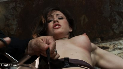 Photo number 4 from Beautiful girl next door is bound spread & helpless<br>Fingered, vibrated to orgasms after orgasms.  shot for Hogtied on Kink.com. Featuring Jennifer White in hardcore BDSM & Fetish porn.
