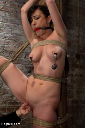 Photo number 11 from Bound with her leg up and wet pussy exposed  this beautiful thing is made to cum over and over. shot for Hogtied on Kink.com. Featuring Jennifer White in hardcore BDSM & Fetish porn.