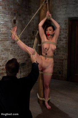 Photo number 12 from Bound with her leg up and wet pussy exposed  this beautiful thing is made to cum over and over. shot for Hogtied on Kink.com. Featuring Jennifer White in hardcore BDSM & Fetish porn.