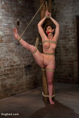Photo number 3 from Bound with her leg up and wet pussy exposed  this beautiful thing is made to cum over and over. shot for Hogtied on Kink.com. Featuring Jennifer White in hardcore BDSM & Fetish porn.
