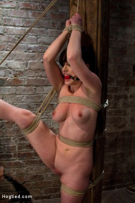 Photo number 7 from Bound with her leg up and wet pussy exposed  this beautiful thing is made to cum over and over. shot for Hogtied on Kink.com. Featuring Jennifer White in hardcore BDSM & Fetish porn.