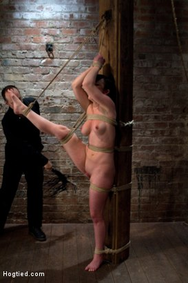 Photo number 9 from Bound with her leg up and wet pussy exposed  this beautiful thing is made to cum over and over. shot for Hogtied on Kink.com. Featuring Jennifer White in hardcore BDSM & Fetish porn.