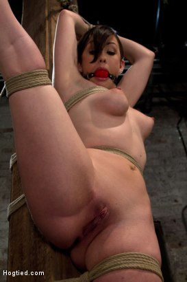 Photo number 1 from Bound with her leg up and wet pussy exposed<br>this beautiful thing is made to cum over and over. shot for Hogtied on Kink.com. Featuring Jennifer White in hardcore BDSM & Fetish porn.
