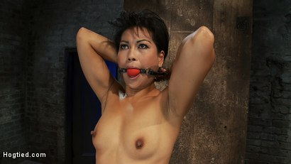 Photo number 1 from Asian MILF with huge nipples is made to cum hard<br>pulled to her tip toes with a brutal crotch rope shot for Hogtied on Kink.com. Featuring Max Mikita in hardcore BDSM & Fetish porn.