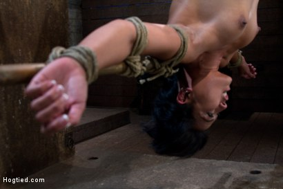 Photo number 1 from Hot Asian MILF gets suspended, suffers weight on her HIUGE nipples, and is made to cum over and over shot for Hogtied on Kink.com. Featuring Max Mikita in hardcore BDSM & Fetish porn.