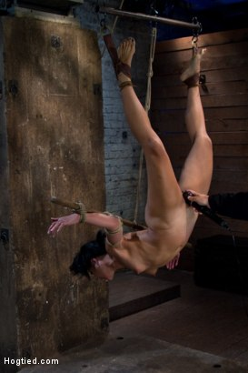 Photo number 9 from Hot Asian MILF gets suspended, suffers weight on her HIUGE nipples, and is made to cum over and over shot for Hogtied on Kink.com. Featuring Max Mikita in hardcore BDSM & Fetish porn.