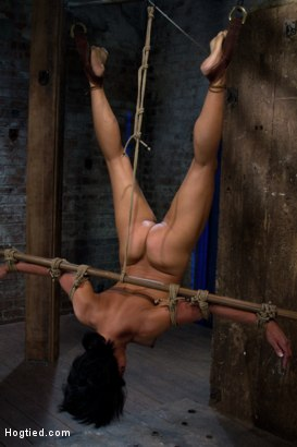 Photo number 5 from Hot Asian MILF gets suspended, suffers weight on her HIUGE nipples, and is made to cum over and over shot for Hogtied on Kink.com. Featuring Max Mikita in hardcore BDSM & Fetish porn.