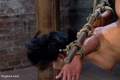 Photo number 6 from Hot Asian MILF gets suspended, suffers weight on her HIUGE nipples, and is made to cum over and over shot for Hogtied on Kink.com. Featuring Max Mikita in hardcore BDSM & Fetish porn.