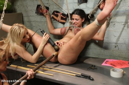 Photo number 3 from Female Owned and Operated shot for Whipped Ass on Kink.com. Featuring Ashley Fires, Dana Vixen and Felony in hardcore BDSM & Fetish porn.