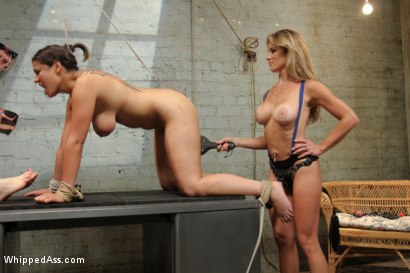 Photo number 5 from Female Owned and Operated shot for Whipped Ass on Kink.com. Featuring Ashley Fires, Dana Vixen and Felony in hardcore BDSM & Fetish porn.