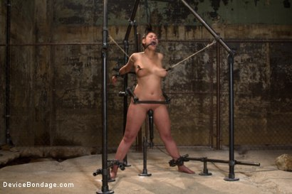Photo number 7 from Covered in Drool and Can't Stop Cumming shot for Device Bondage on Kink.com. Featuring Dana Vixen in hardcore BDSM & Fetish porn.