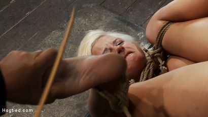 Photo number 14 from Fresh girl from Down Under suffers some hard foot caning   One brutal squirting orgasm after anoth shot for Hogtied on Kink.com. Featuring Kelly Surfer in hardcore BDSM & Fetish porn.