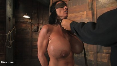 Photo number 17 from Babes with Huge Tits vol 1 shot for Kink Compilations on Kink.com. Featuring Daphne Rosen, Mz Berlin, Trina Michaels, Lisa Lipps, Bella Rossi, Dee Williams, Ava Devine, Katie Kox, Madison Scott and Carly Parker in hardcore BDSM & Fetish porn.