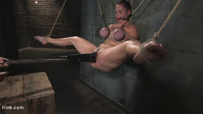 Photo number 3 from Babes with Huge Tits vol 1 shot for Kink Compilations on Kink.com. Featuring Daphne Rosen, Mz Berlin, Trina Michaels, Lisa Lipps, Bella Rossi, Dee Williams, Ava Devine, Katie Kox, Madison Scott and Carly Parker in hardcore BDSM & Fetish porn.