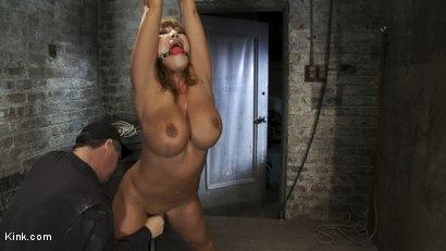 Photo number 6 from Babes with Huge Tits vol 1 shot for Kink Compilations on Kink.com. Featuring Daphne Rosen, Mz Berlin, Trina Michaels, Lisa Lipps, Bella Rossi, Dee Williams, Ava Devine, Katie Kox, Madison Scott and Carly Parker in hardcore BDSM & Fetish porn.