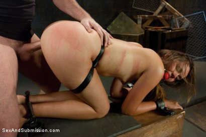Photo number 8 from Defiant Bound Slut shot for Sex And Submission on Kink.com. Featuring Mark Davis and Allie Haze in hardcore BDSM & Fetish porn.