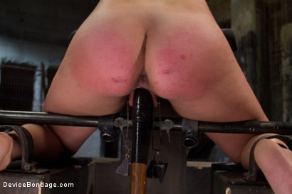 Photo number 5 from The Stuff Dreams Are Made Of shot for Device Bondage on Kink.com. Featuring Chloe Camilla in hardcore BDSM & Fetish porn.