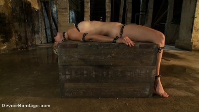 Photo number 13 from The Sweeter They Look, The Funner They Are Chained to a Box shot for Device Bondage on Kink.com. Featuring Chloe Camilla in hardcore BDSM & Fetish porn.