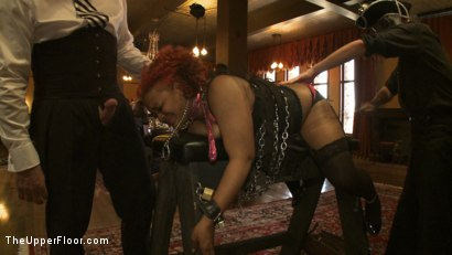 Photo number 4 from Stefanos' Brunch shot for The Upper Floor on Kink.com. Featuring Maestro Stefanos, Nerine Mechanique and Jessie Cox in hardcore BDSM & Fetish porn.