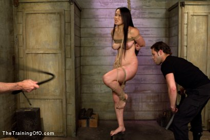 Photo number 14 from Madeleine Day 4 shot for The Training Of O on Kink.com. Featuring Madeleine Mei and Wolf Hudson in hardcore BDSM & Fetish porn.