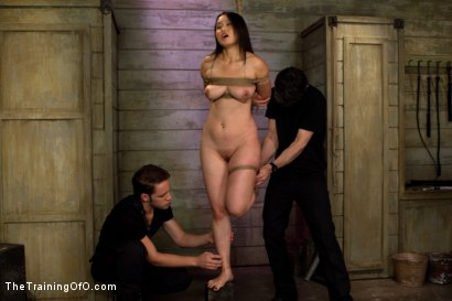 Photo number 11 from Madeleine Day 4 shot for The Training Of O on Kink.com. Featuring Madeleine Mei and Wolf Hudson in hardcore BDSM & Fetish porn.