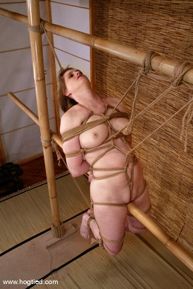 Photo number 7 from Tracey Hilton shot for Hogtied on Kink.com. Featuring Tracey Hilton in hardcore BDSM & Fetish porn.